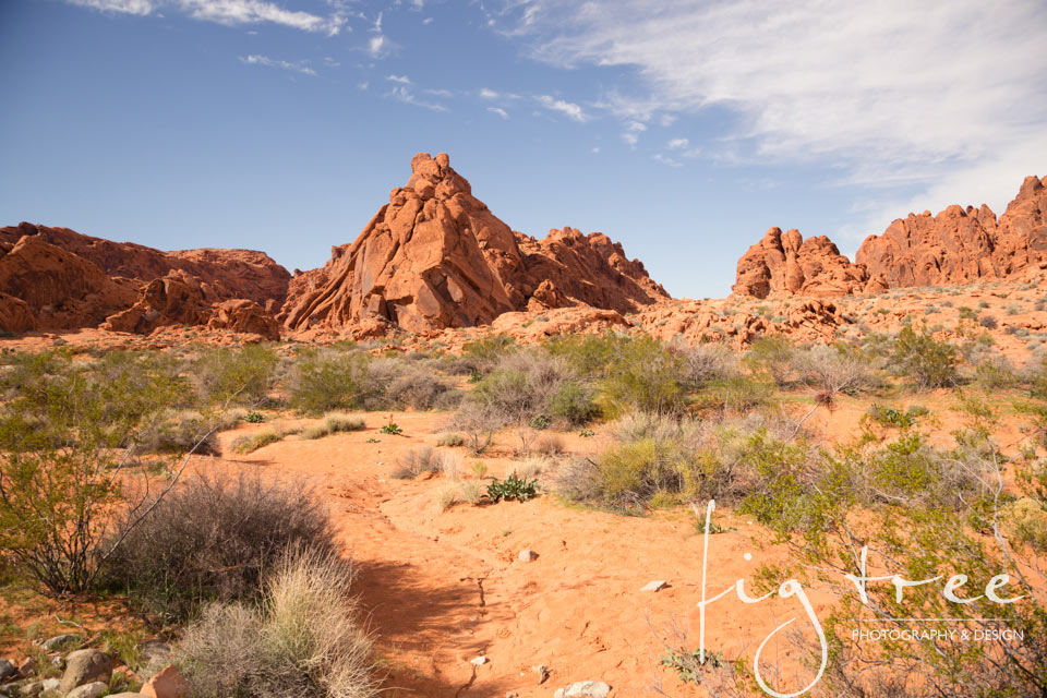 Valley_of_fire_06