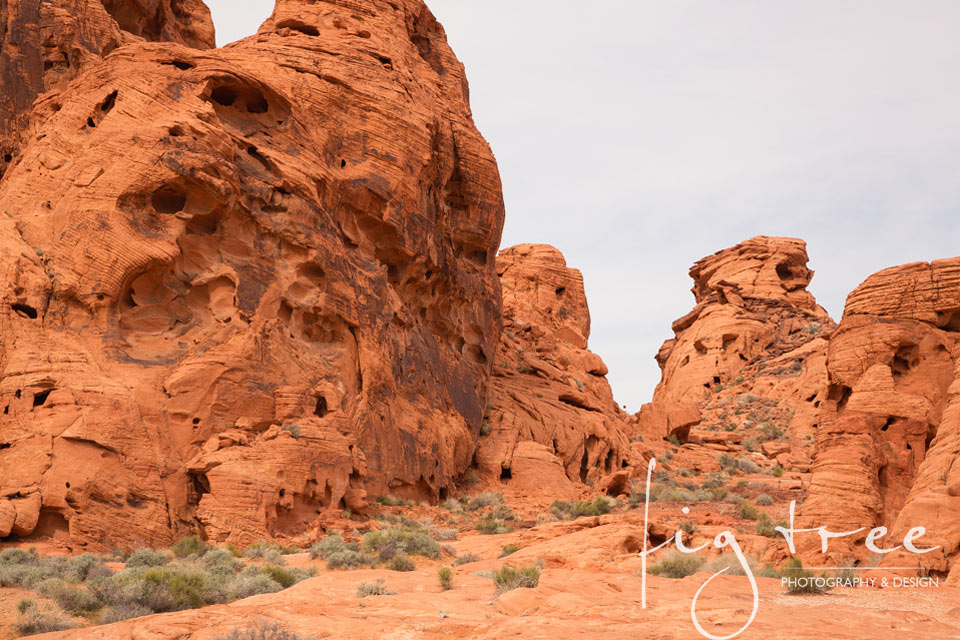 Valley_of_fire_12